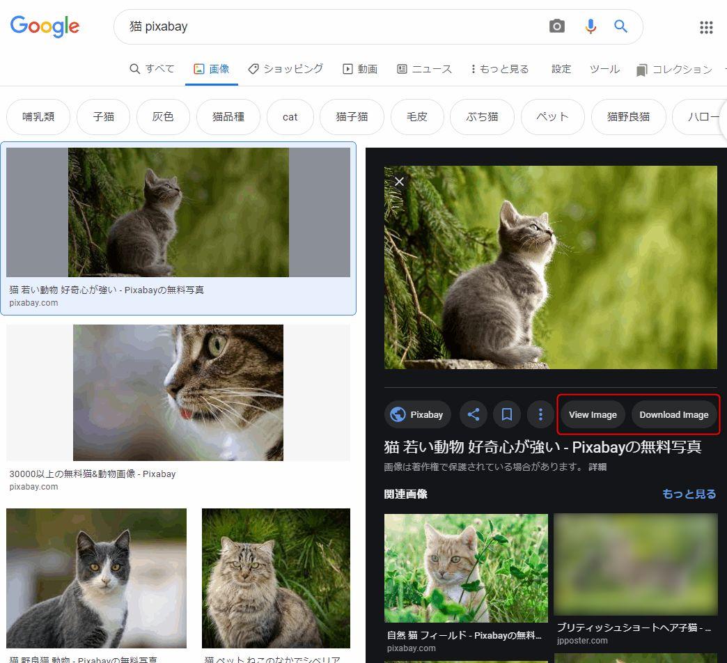 Google画像検索に復活した「画像を表示」ボタン